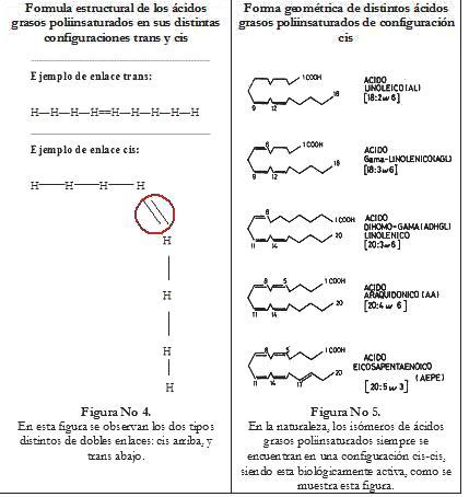 acidos grasos cis trans