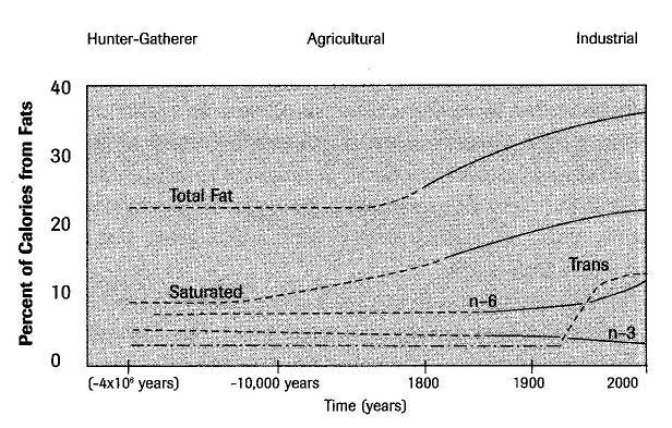 Consumo de grasa 1